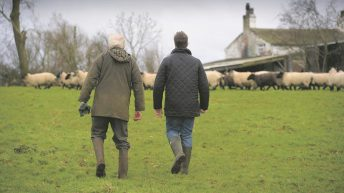 World Suicide Prevention Day: Farmers urged to seek help and help support each other