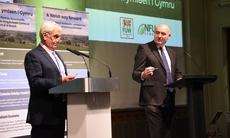 'Evolution, not revolution' – Wales' farming unions call for 'Welsh way forward'