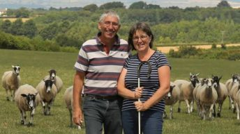 NSA chairman to host sheep event in 2019