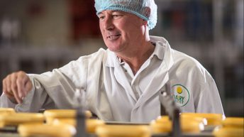 Dairy Crest sales up 2% as key brands and spreads grow