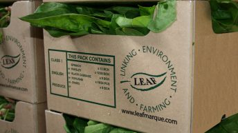 LEAF invites industry to help shape future of the marque