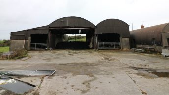 Farming to lose £850 million in profits after no-deal – research