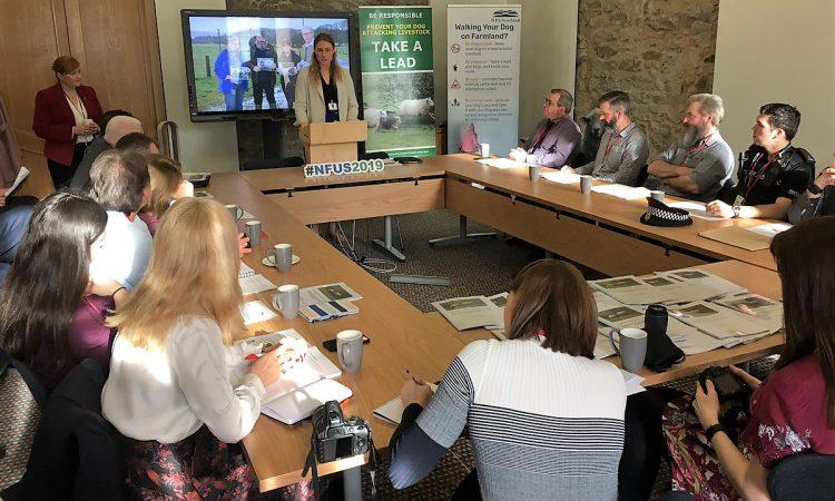 Scotland launches public consultation to tackle attacks on livestock