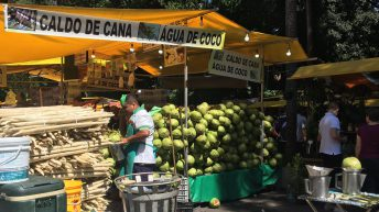 Brazilian producers race to ramp up traceability and sustainability as Brexit nears