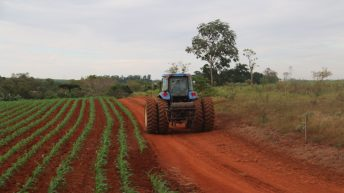 6 things you need to know about Brazilian agriculture