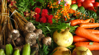 UK organic market hits highest growth level in 15 years