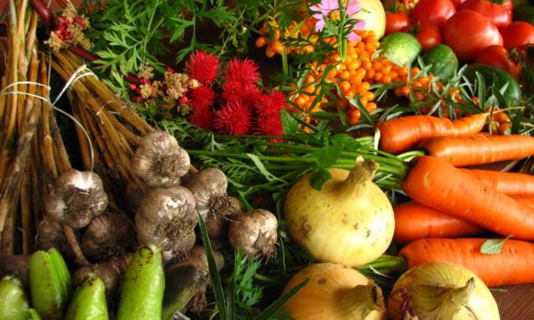 Defra data shows growth among UK organic producers