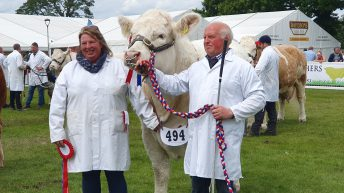 Highland Show: Veteran Charolais breeder clinches beef championship