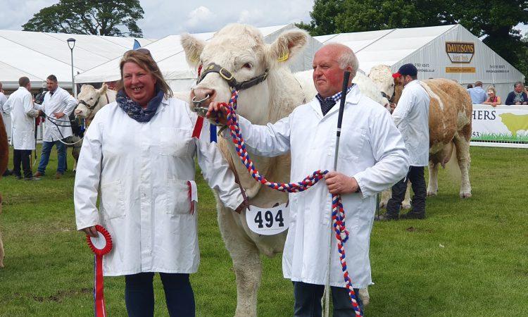 Highland Show: Veteran Charolais breeder clinches beef championship