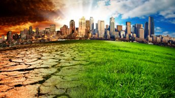 UN report: Better land management and dietary changes needed