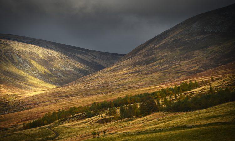 New 'landscape leadership' programme to help shape Scotland's rural environments