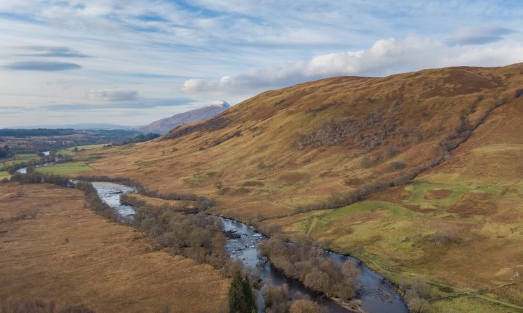 2,000ac for sale includes a mix of in-bye pasture, hill ground and woodlands