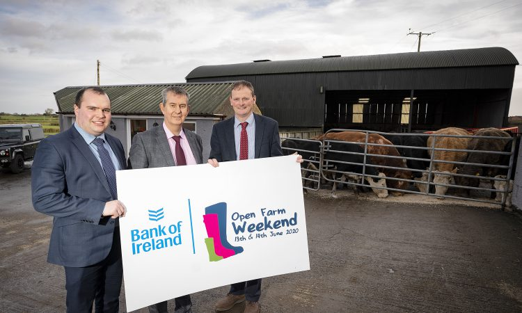 Open Farm Weekend: Reconnecting the public with NI farmers and produce