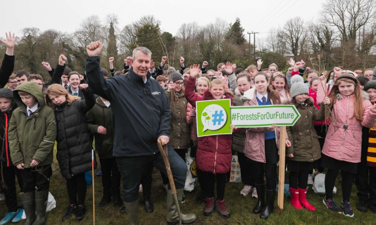 1,000 saplings planted as part of new DAERA programme