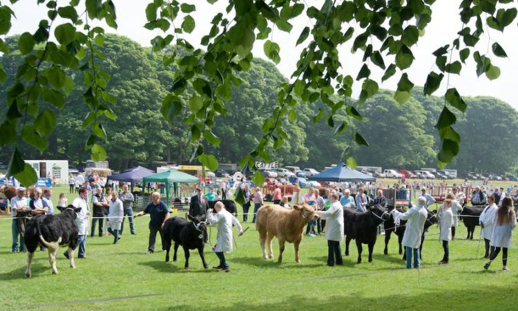 Newry and Lurgan shows cancelled, as well as UK Grassland & Muck event
