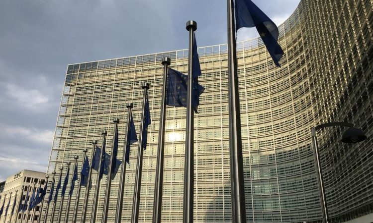 Commission working to 'ensure flow of essential goods' across borders