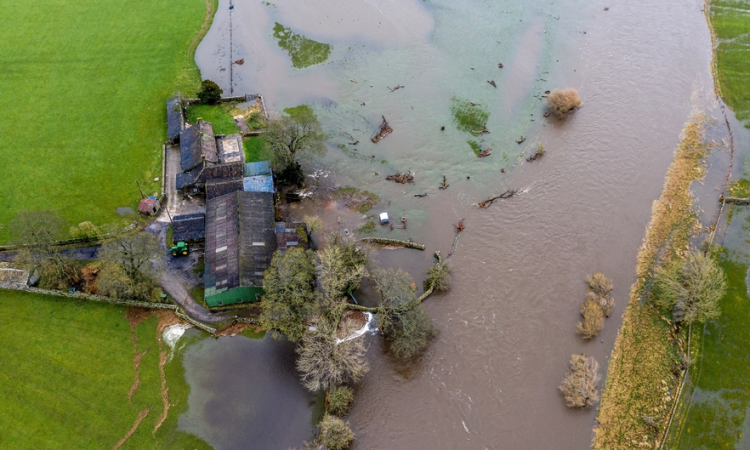 Government measures for flood-stricken farms 'a huge relief'