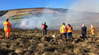 DAERA minister calls for halt to prescribed burning