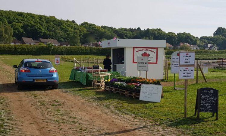 Fruit farm's new drive-thru proves instant hit