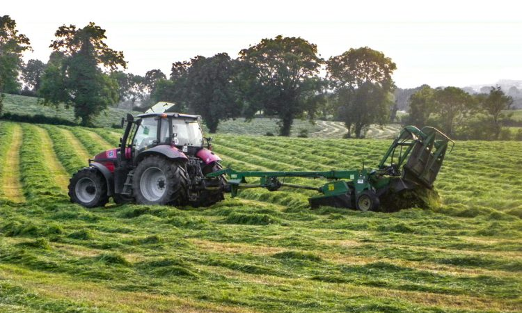 Sheep advice: Think about quality over quantity when it comes to making silage