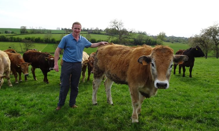 Meet Northern Ireland's 4 new Technology Demonstration Farms