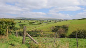 Poll shows 75% of NI public want more support for green farming