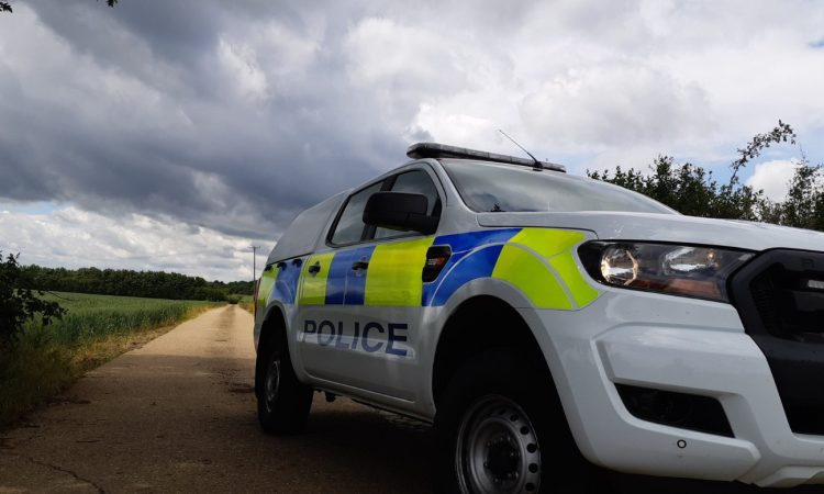 Appeal for info following theft of large number of sheep