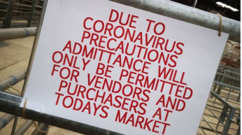LAA welcomes ease of Covid-19 restrictions but encourages farmers to exercise caution