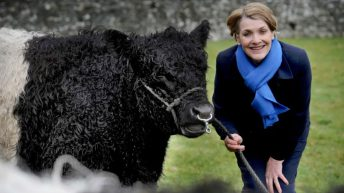 Dumfries and Galloway's Highland Show host year extended into 2021