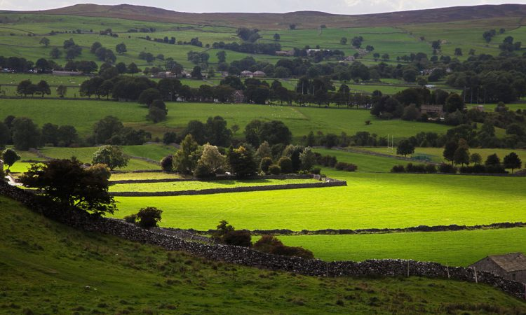 'Stop playing politics with the countryside' – SCA