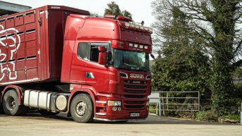 Consultation proposals will cause 'significant disruption to livestock transportation'