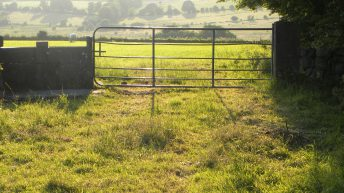 Appeal for info after trespasser punches landowner