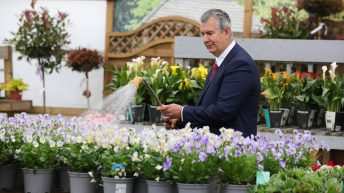 Poots opens £1.6 million ornamental horticulture support scheme