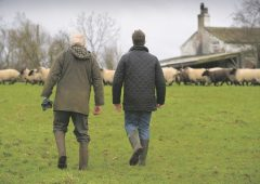 35% of English and Welsh farmers possibly/probably depressed