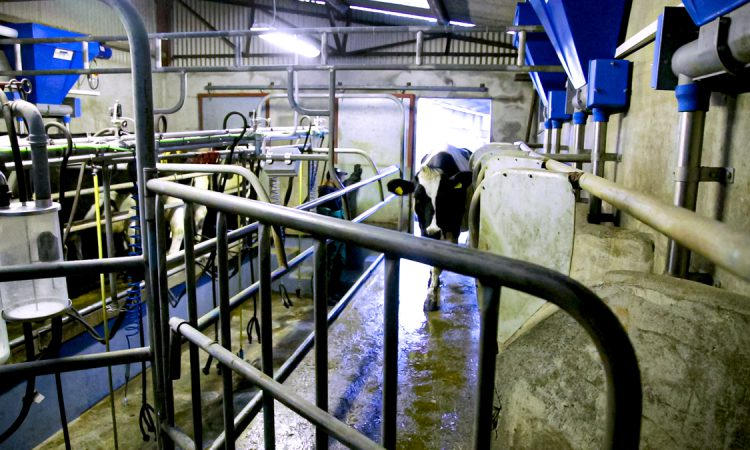 Farming unions warn of rising dairy production costs and unstable milk prices