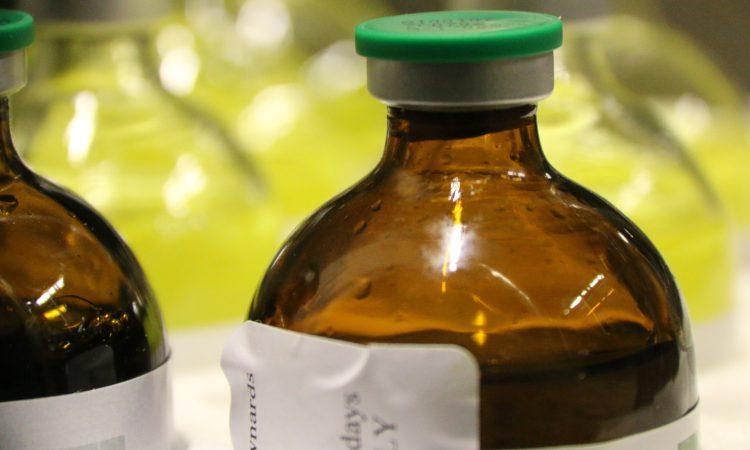 DAERA to take responsible antibiotics use courses online