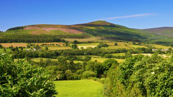 'Ambitious strategy' needed to achieve net zero carbon future in Northern Ireland