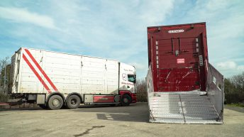 Government introduces new welfare standards for transporting animals