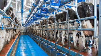 DAERA invites applications for Dairy Technology Demonstration Farms