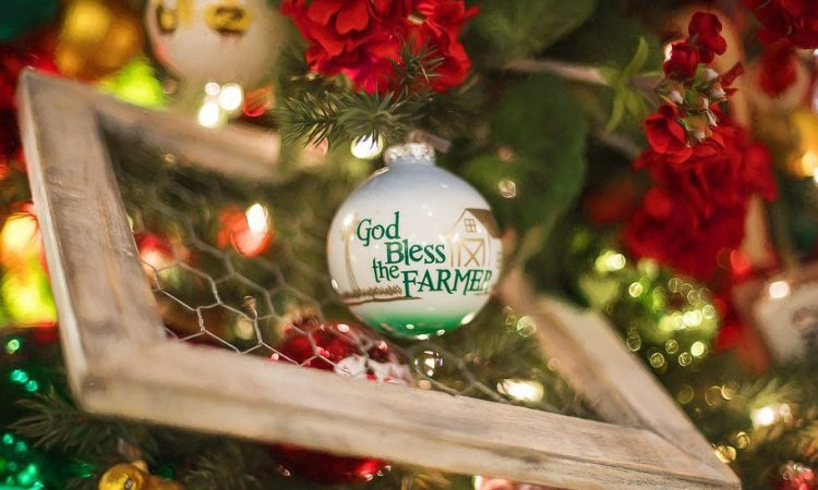 AgriLand's ultimate Christmas gift guide