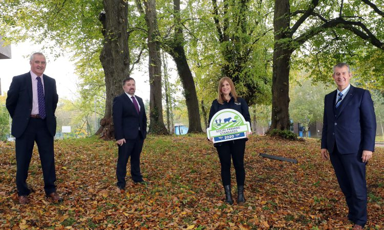 Poots and Swann launch new social support scheme for rural areas