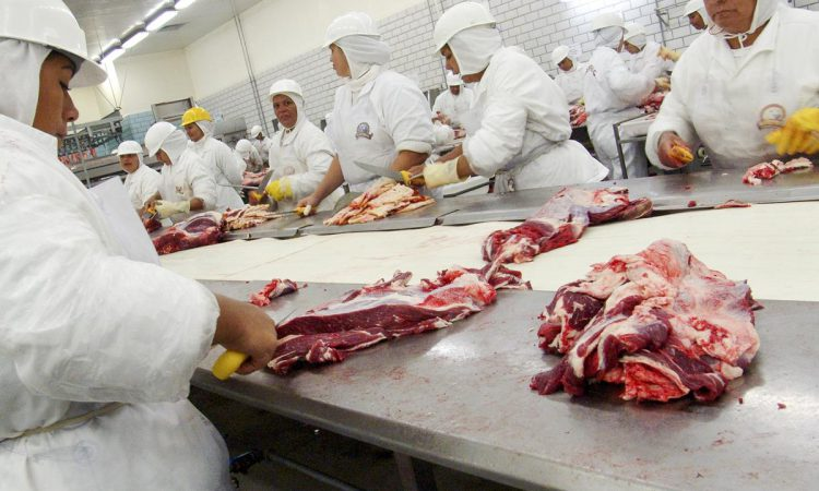 Covid-19: Calls for NI meat plant workers to be prioritised in vaccine roll-out