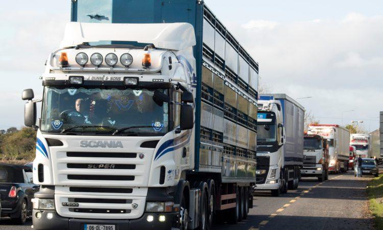 UFU highlights concerns regarding animal movements from GB to Northern Ireland