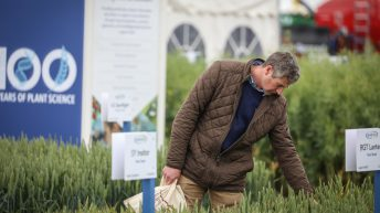 Cereals 2021 sets target to return as a physical show in June
