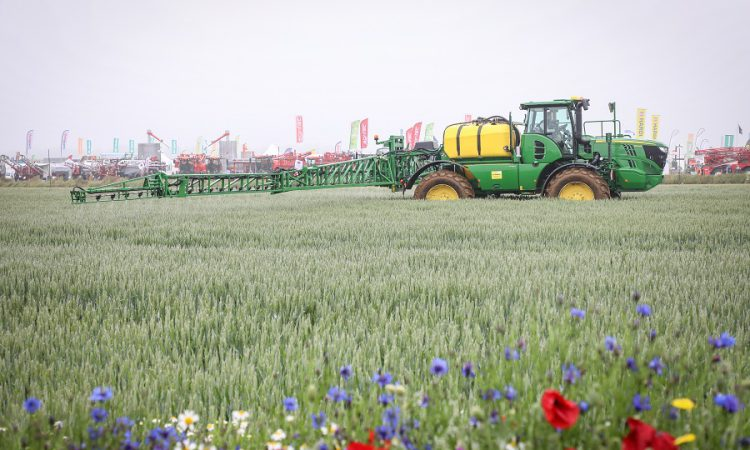 Free early bird tickets on offer for Cereals 2021