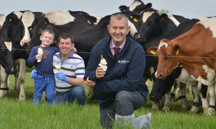Former NI agriculture minister Edwin Poots returns to MLA duties