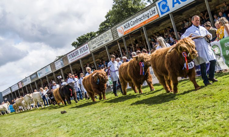 2021 Turriff show cancelled due to 'continued uncertainty' around Covid-19