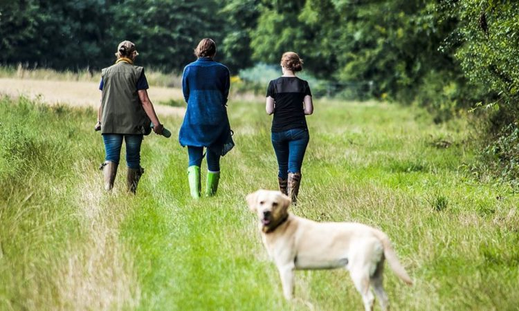 Farm unions respond to launch of refreshed Countryside Code