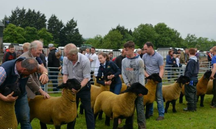 Ballymoney Show becomes the first of NI's summer shows to cancel for 2021