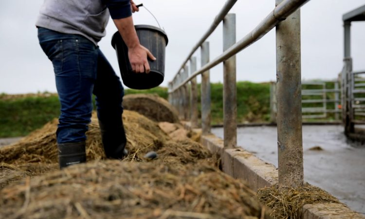 The cost of feeding the nation: 258 agri-food Covid deaths recorded in England and Wales